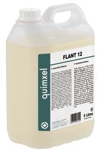 FLANT 12
